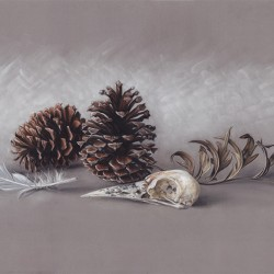 Pieces and Pinecones