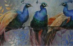 Loes Peacocks