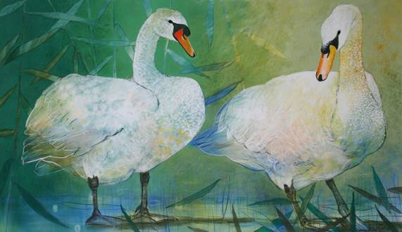 Loes two swans