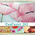 PanPastel 202