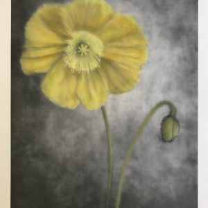 Dianne Poinski Finished Print